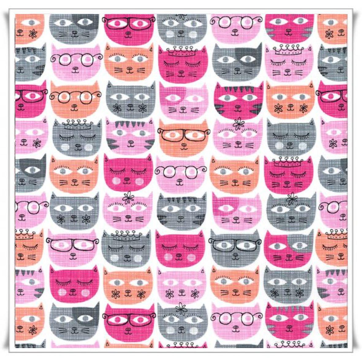 22 - SASSY CATS.jpg