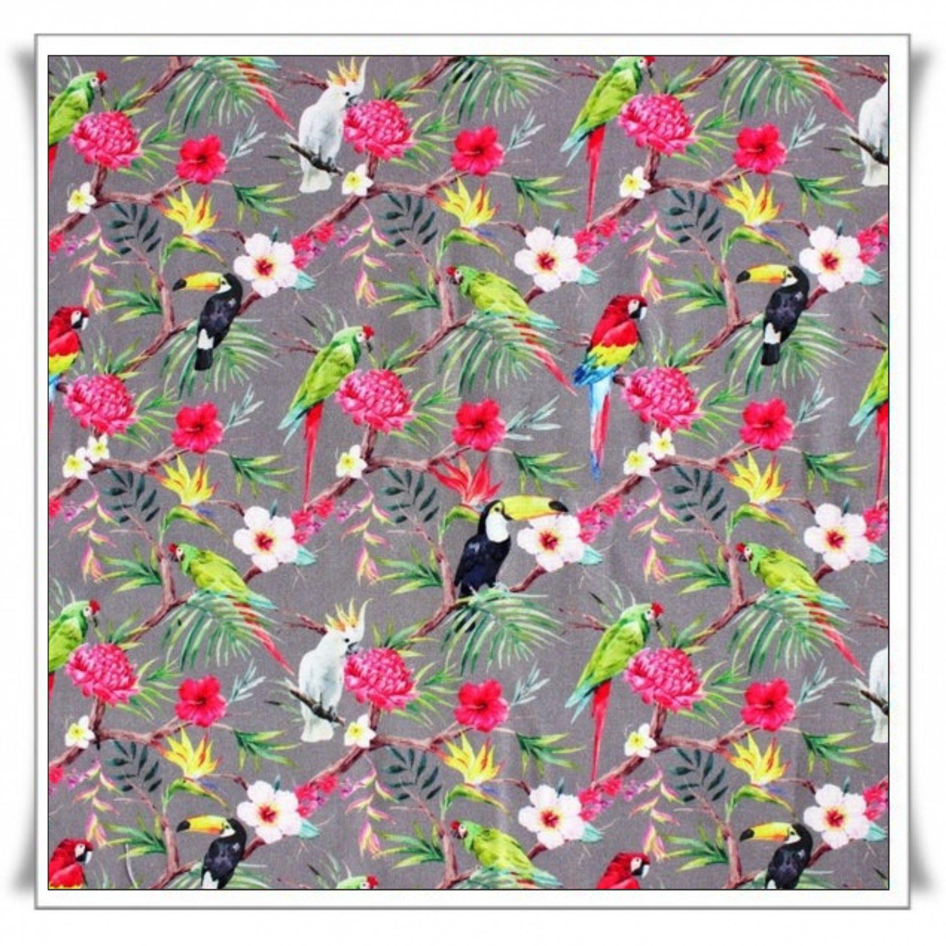 24- TROPICAL BIRDS.jpg