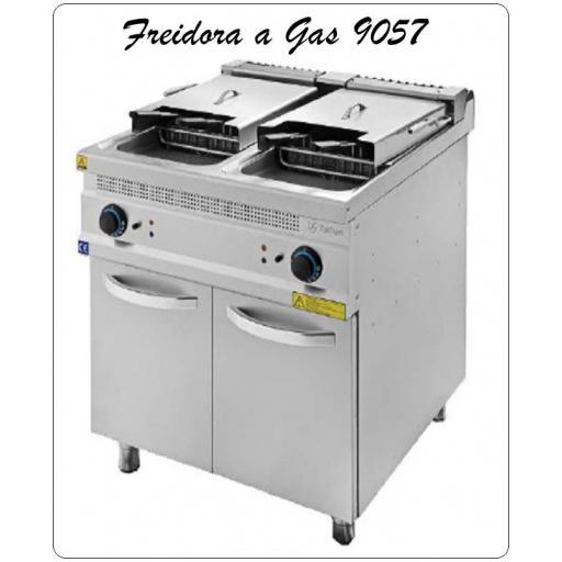 Freidora a Gas 9057-24+24 litros