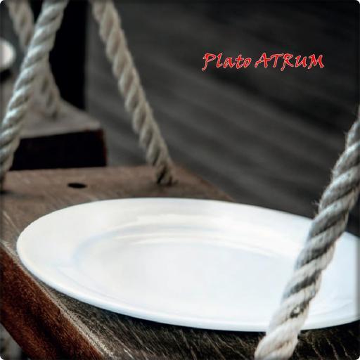 Vitro porcelana ATRUM