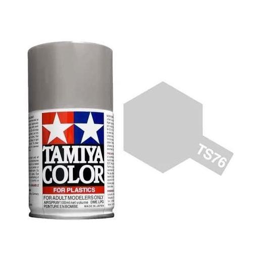 Spray Paint TS-76 Mica Silver