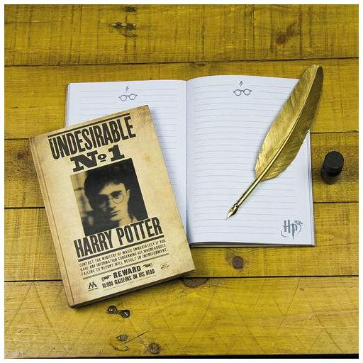 Libreta Harry Potter se busca