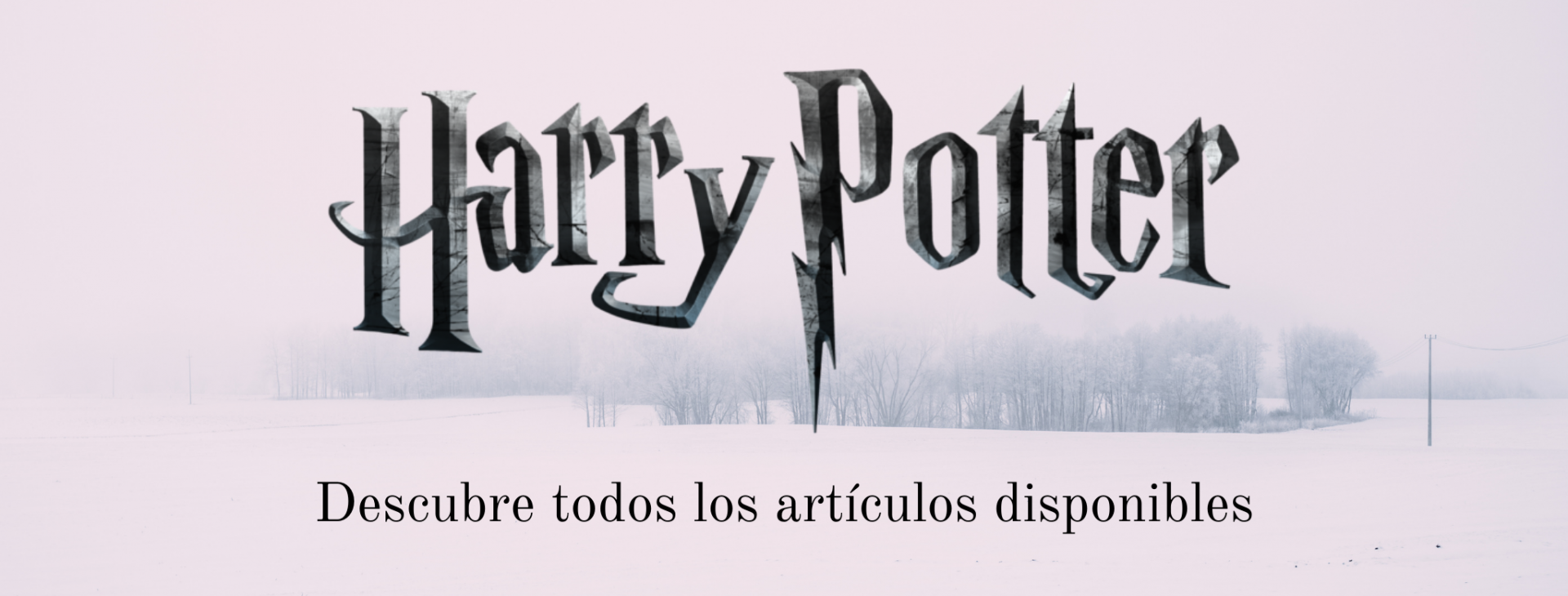 banner harry.png