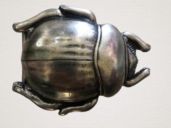 Cinturón Escarabajo
