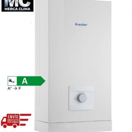 Calentador Neckar 10 litros W10-AME BUT