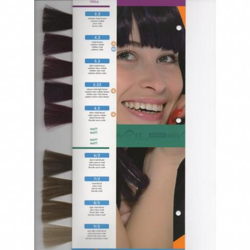 Tinte Hair Smart N 4.2 Castaño Violeta [1]