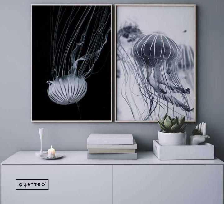Composición Medusa