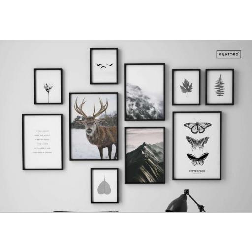 Composición Forest
