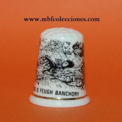 DEDAL BRIG O FEUGH BANCHORY RF. 02120