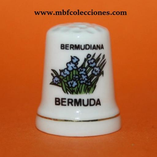 DEDAL BERMUDIANA - BERMUDA RF. 01717