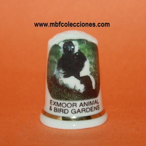 DEDAL EXMOOR ANIMAL & BIRD GARDENS RF. 01788