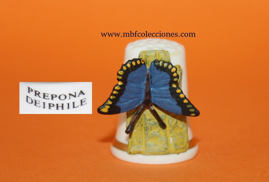 DEDAL PREPONA DEIPHILE  RF. 01555