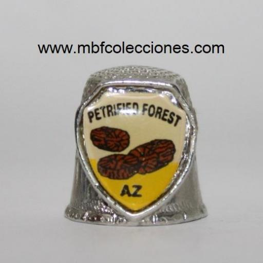 DEDAL PETRIFIED FOREST - ARIZONA RF. 04284