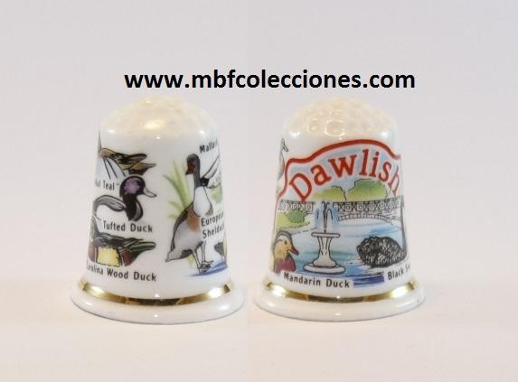 DEDAL DAWLISH RF. 0744