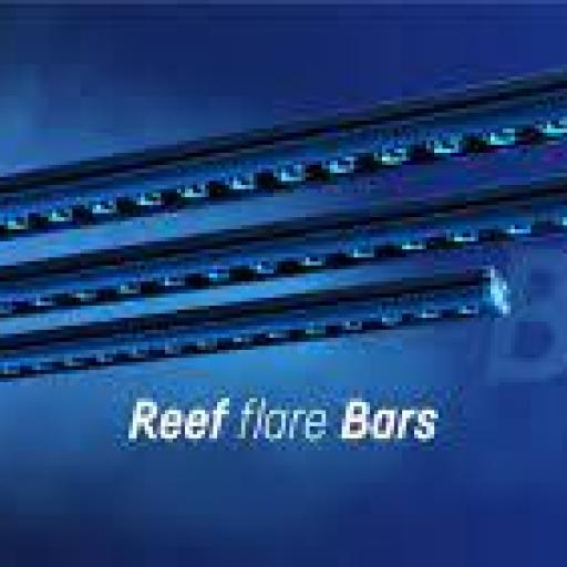 reef flare bars en reef Heart