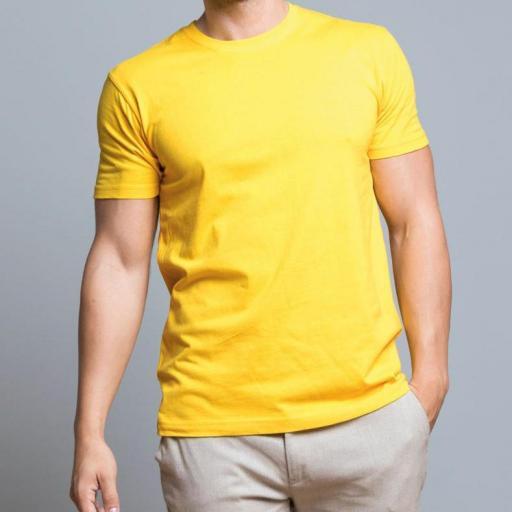 Camiseta Adulto - Pecho y espalda [2]