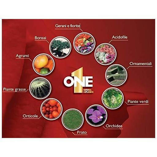 NUTRI ONE LIQUIDO 1 LITRO Abono concentrado para todo tipo de plantas [1]