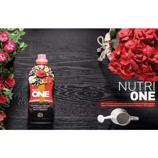 NUTRI ONE LIQUIDO 1 LITRO Abono concentrado para todo tipo de plantas [2]
