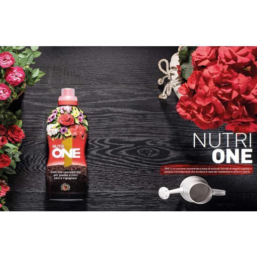 NUTRI ONE ABONO CONCENTRADO PARA PLANTAS 500 ML [1]