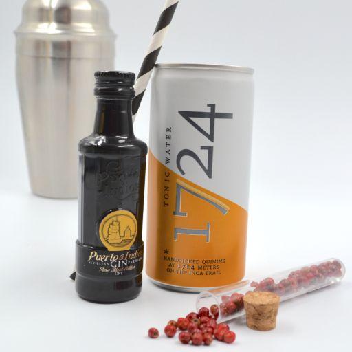 Kit Gin Tonic Puerto de Indias Classic & Tonic Water 1724 [1]