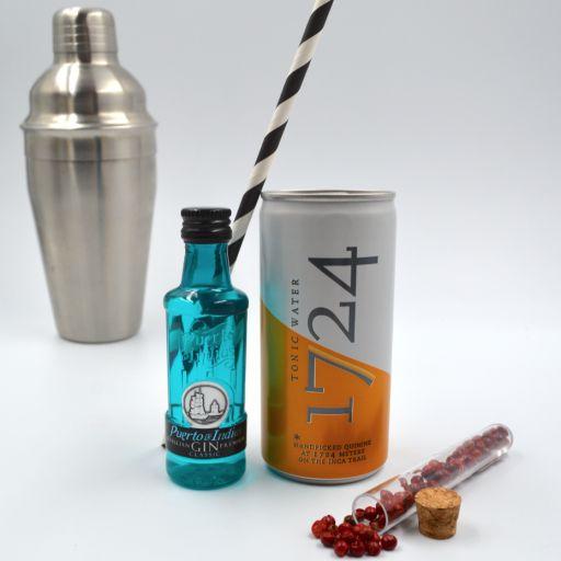 Kit Gin Tonic Puerto de Indias Classic & Tonic Water 1724