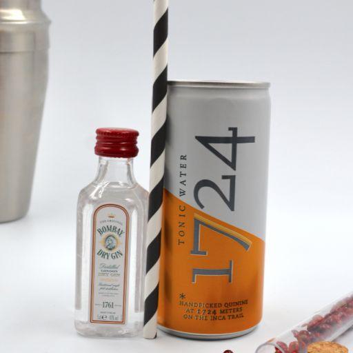 Kit Gin Tonic Bombay & Tonic Water 1724 [1]