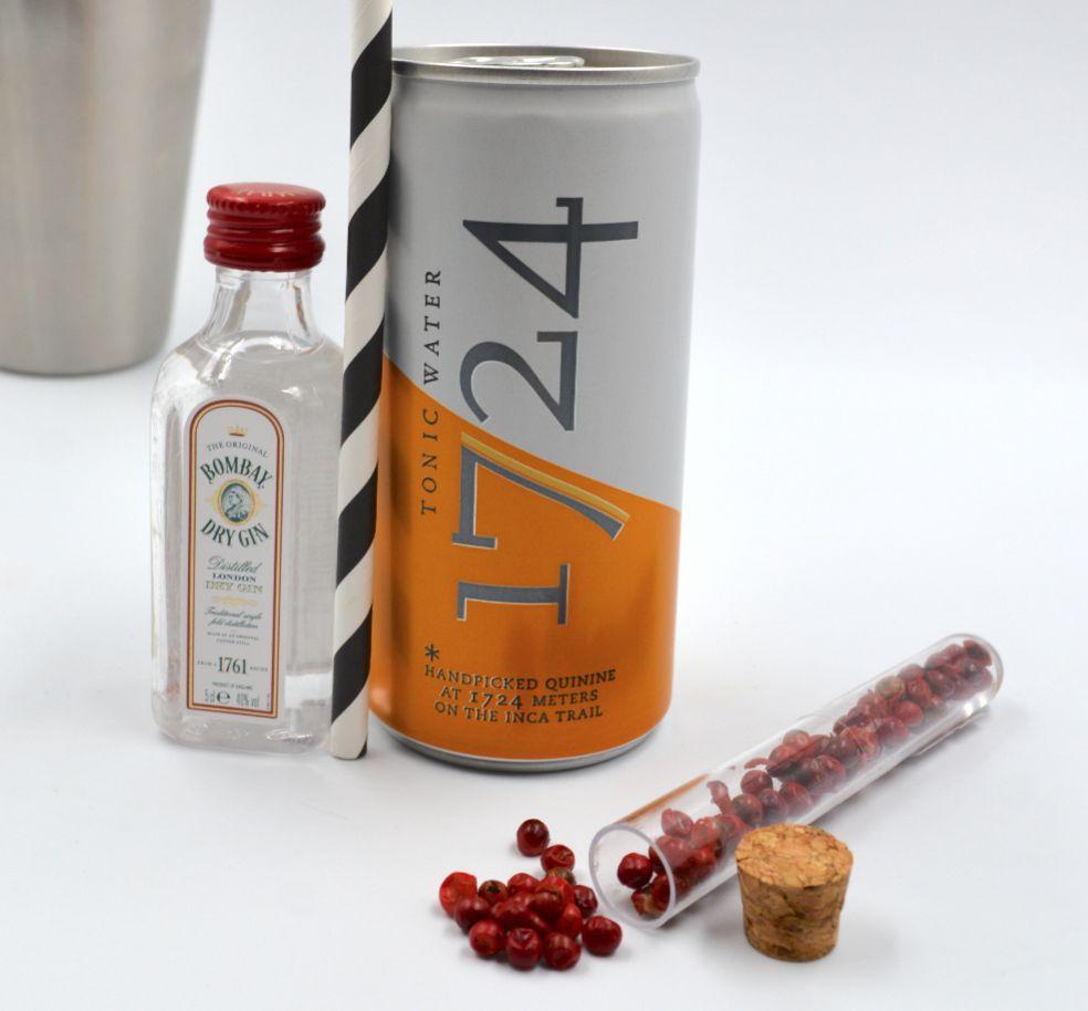Kit Gin Tonic Bombay & Tonic Water 1724