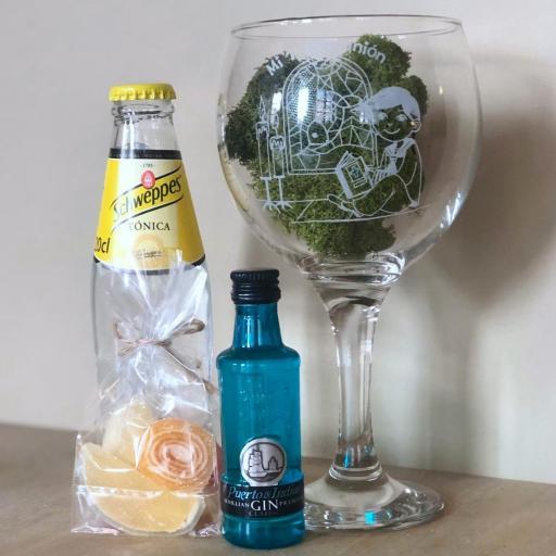 Kit Gin Tonic Puerto de Indias Classic & Tónica