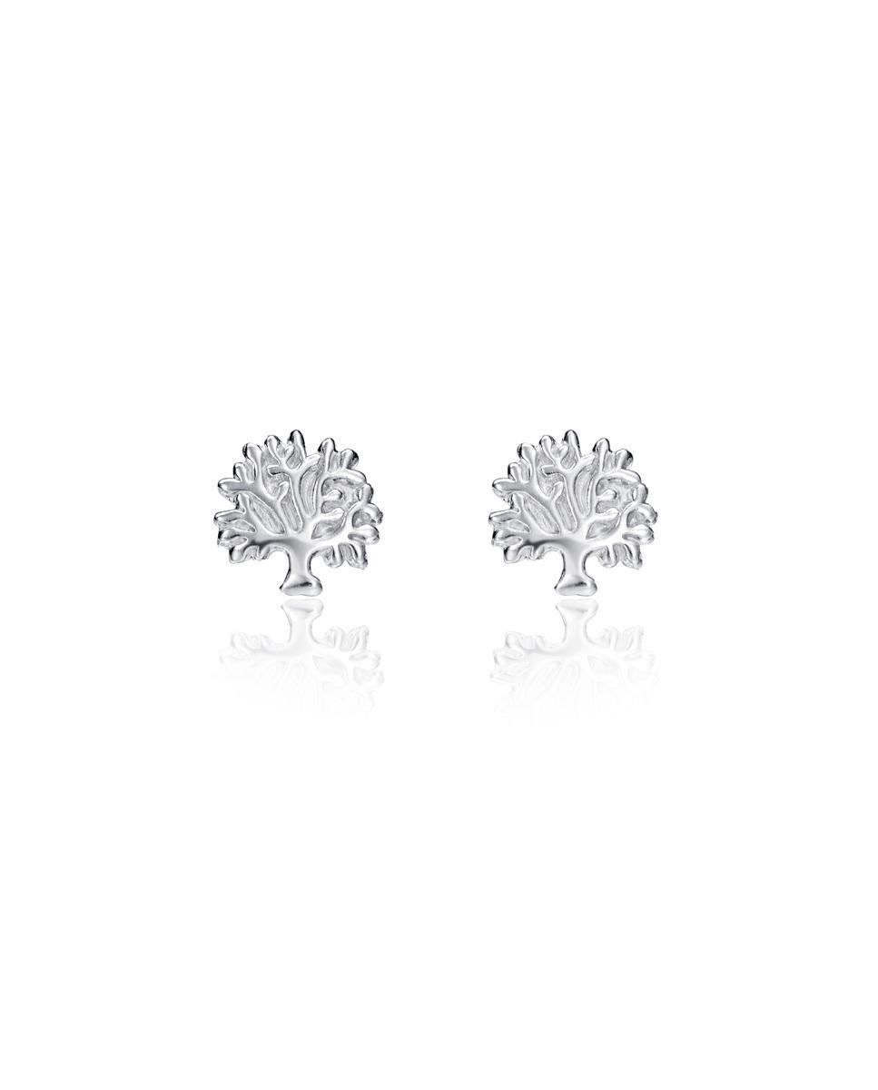 Pendientes Viceroy Jewels Plata Ref. 5101E000-30