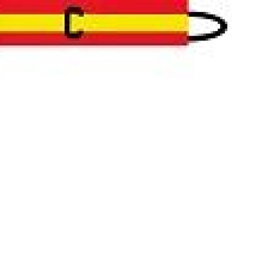 BRAZALETE ESPAÑA jpg.jpg [1]