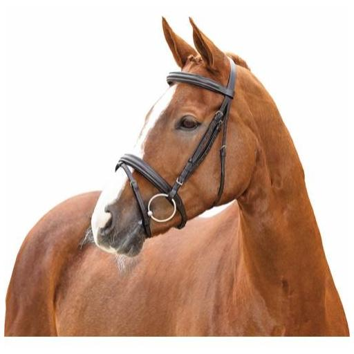 CABEZADA AYAL HORSE GUARD