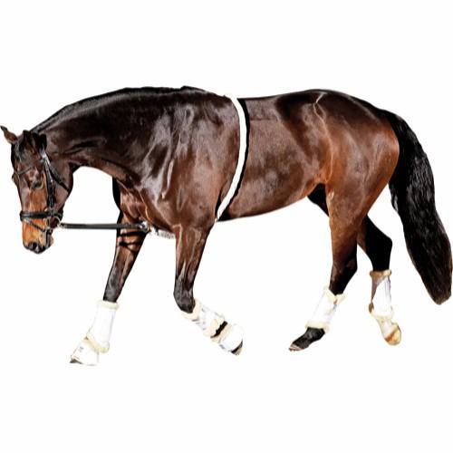 CHAMBÓN ALGODÓN HORSE GUARD