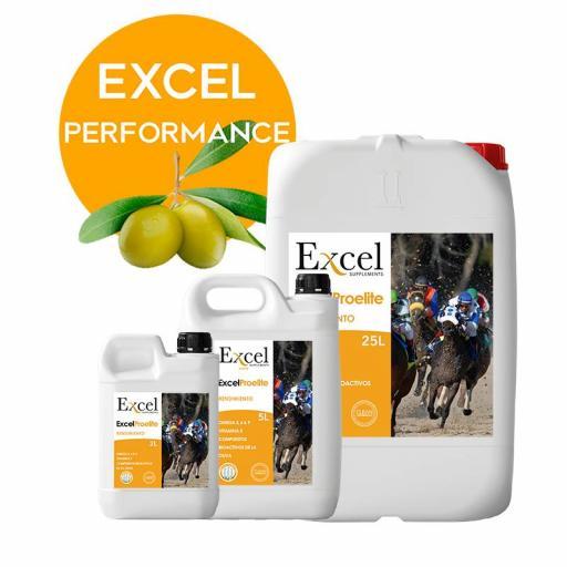 Excel ProElite [1]