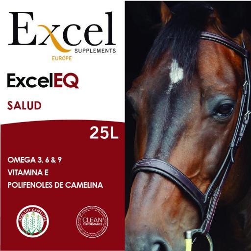 Excel EQ [2]