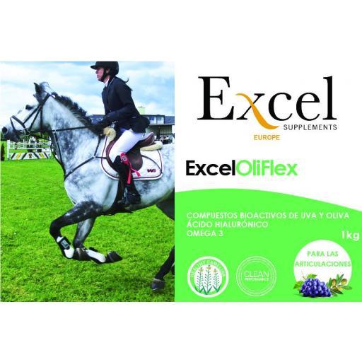 EXCEL OliFlex [1]