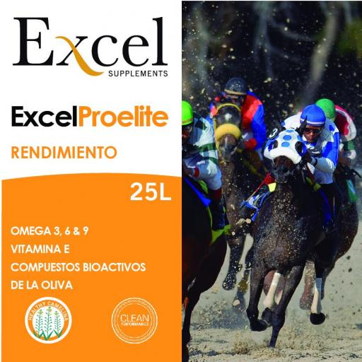 Excel ProElite [2]