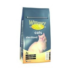 WILLOWY GOLD CATS STERILIZED