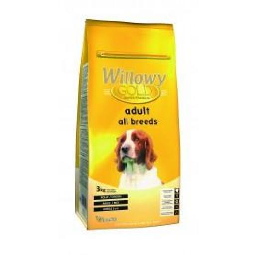 WILLOWY GOLD DIARY
