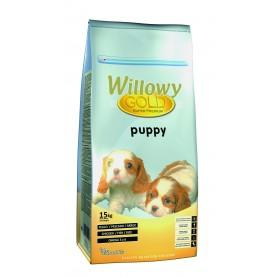 WILLOWY GOLD PUPPY