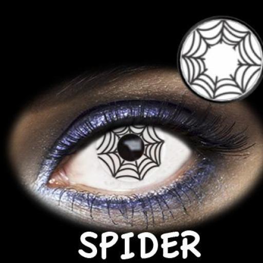 FAD004 - SPIDER 1 DAY