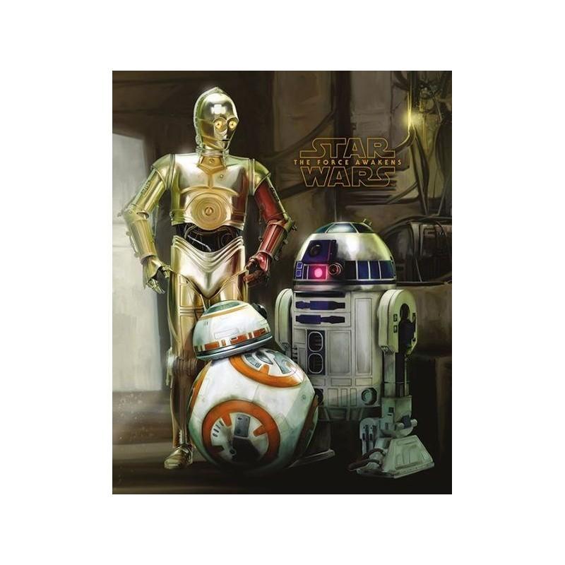 Poster 40 x 50 Star Wars Episode VII Droids