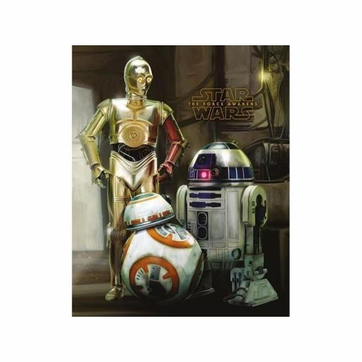 Poster 40 x 50 Star Wars Episode VII Droids [0]