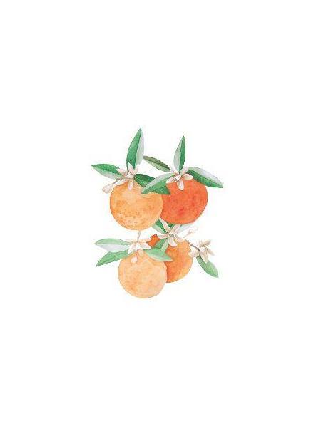 Ambientador de Azahar y Mandarina 180ml [1]