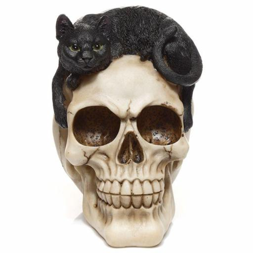 Calavera con Gato Negro