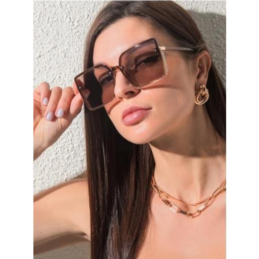 Gafas de sol con lentes teñidos [1]
