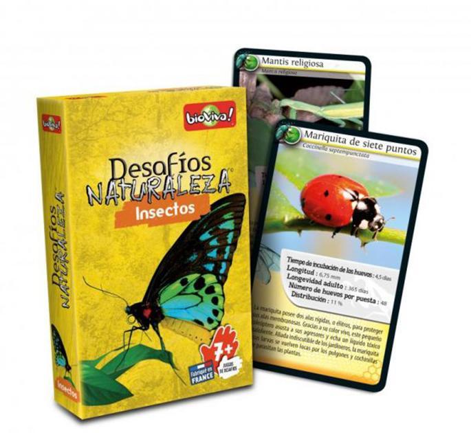 Desafíos naturaleza: insectos