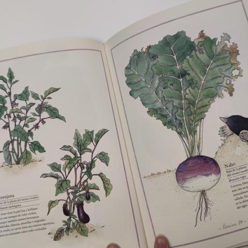 Inventario de frutas y verduras [1]