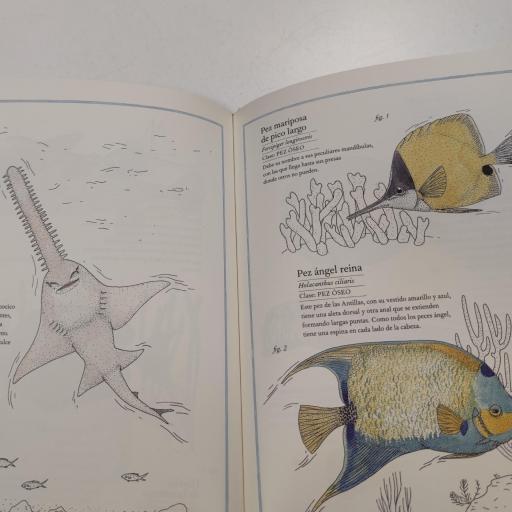 Inventario de los mares [2]