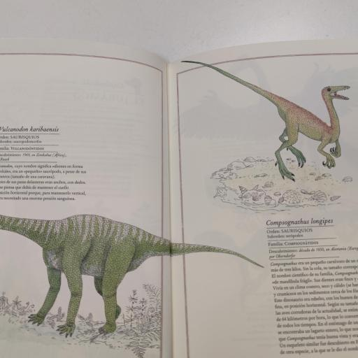 Inventario dinosaurios [2]