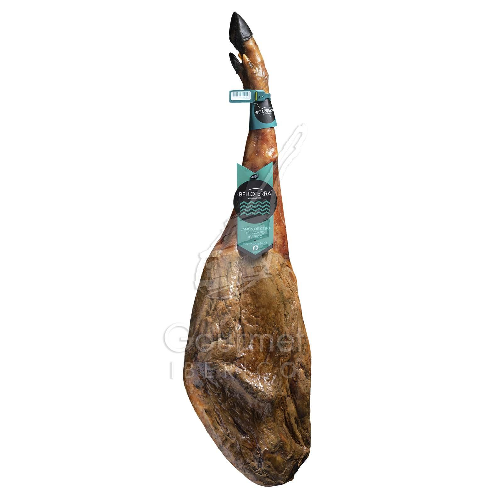 Jamón ibérico de cebo de campo 50% Belloterra